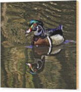 Wood Duck Autumn Reflections Wood Print