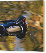 Wood Duck Wood Print by Clayton Bruster