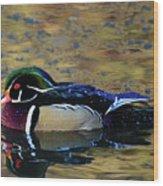 Wood Duck Drake Wood Print
