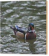 Wood Duck Male 20130924_258 Wood Print