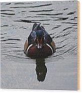 Wood Duck Male 20130924_268 Wood Print