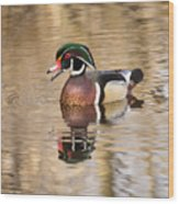 Wood Duck With Reflection Wood Print