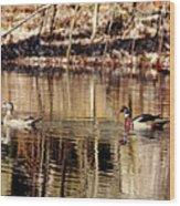 Wood Ducks Enjoying The Pond Wood Print