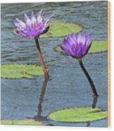 Wood Enhanced Water Lilies Wood Print
