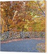 Wood Fence 1 Wood Print