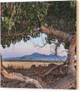 Wood Frame Window Wood Print