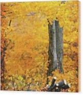 Wood Pile In Autumn Wood Print
