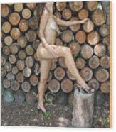 Wood Shed 269 Wood Print