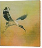 Wood Stork Encounter Wood Print