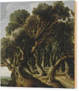 Wooded Landscape Wood Print