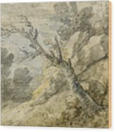 Wooded Landscape With Rocks And Tree Stump Wood Print