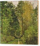 Wooded Path Wood Print