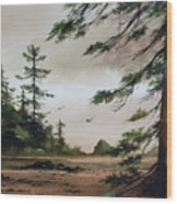 Wooded Shore Wood Print
