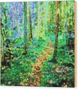 Wooded Trail Wood Print