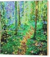 Wooded Trail Wood Print