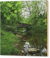 Wooded Valley Of The Patapsco River North Branch Maryland Wood Print