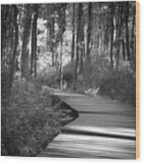 Wooded Walk Wood Print