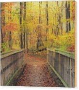 Wooden Bridge   Hdr Wood Print