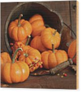 Wooden Bucket Filled With Tiny Pumpkins Wood Print