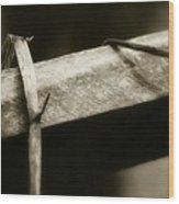 Wooden Fence Part 1 Wood Print