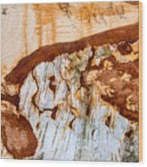 Wooden Landscape - Natural Abstract Structure Wood Print