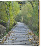 Wooden Path Wood Print