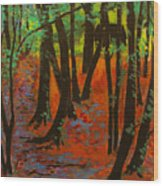 Woodland At Watkins Glen New York Wood Print