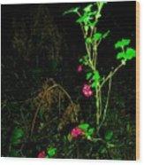 Woodland Bush Wood Print