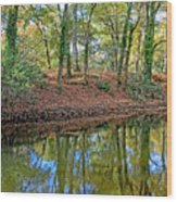 Woodland Canal 2 Wood Print