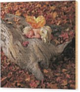 Woodland Fairy Wood Print by Anne Geddes