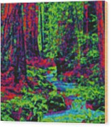 Woodland Forest D5b Wood Print