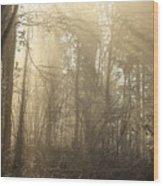 Woodland Glade 2 Wood Print