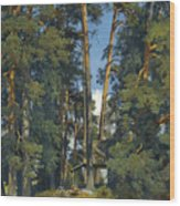 Woodland Grove Wood Print