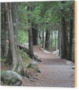 Woodland Path Wood Print