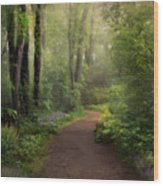 A New Spring Wood Print