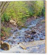Woodland Stream And Waterfall, Hickory Run, Pocono Mountains Wood Print