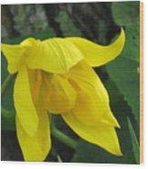 Woodland Tulip Wood Print
