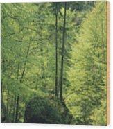 Woodland View With Stream, Sachsische Wood Print