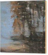 Woodlands At The Lake Wood Print