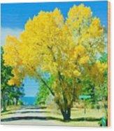 Woodmoor Wood Print