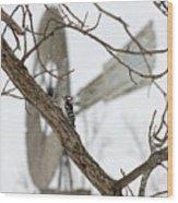 Woodpecker And Windmill Wood Print