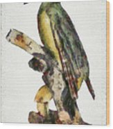 Woodpecker Red Heads Wood Print