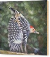 Woodpecker Wings Wood Print