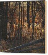 Woods - 1 Wood Print