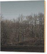 Woods Among The Trees Wood Print