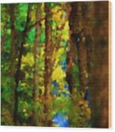 Woods Approach To Lake Wood Print