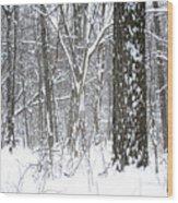 Woods In Winter Wood Print