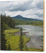 Wood's Lake Summer Landscape Wood Print
