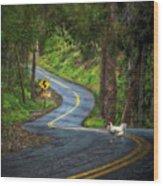 Woods Road 1 - Summer Wood Print