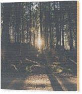 Woods Sunset Wood Print